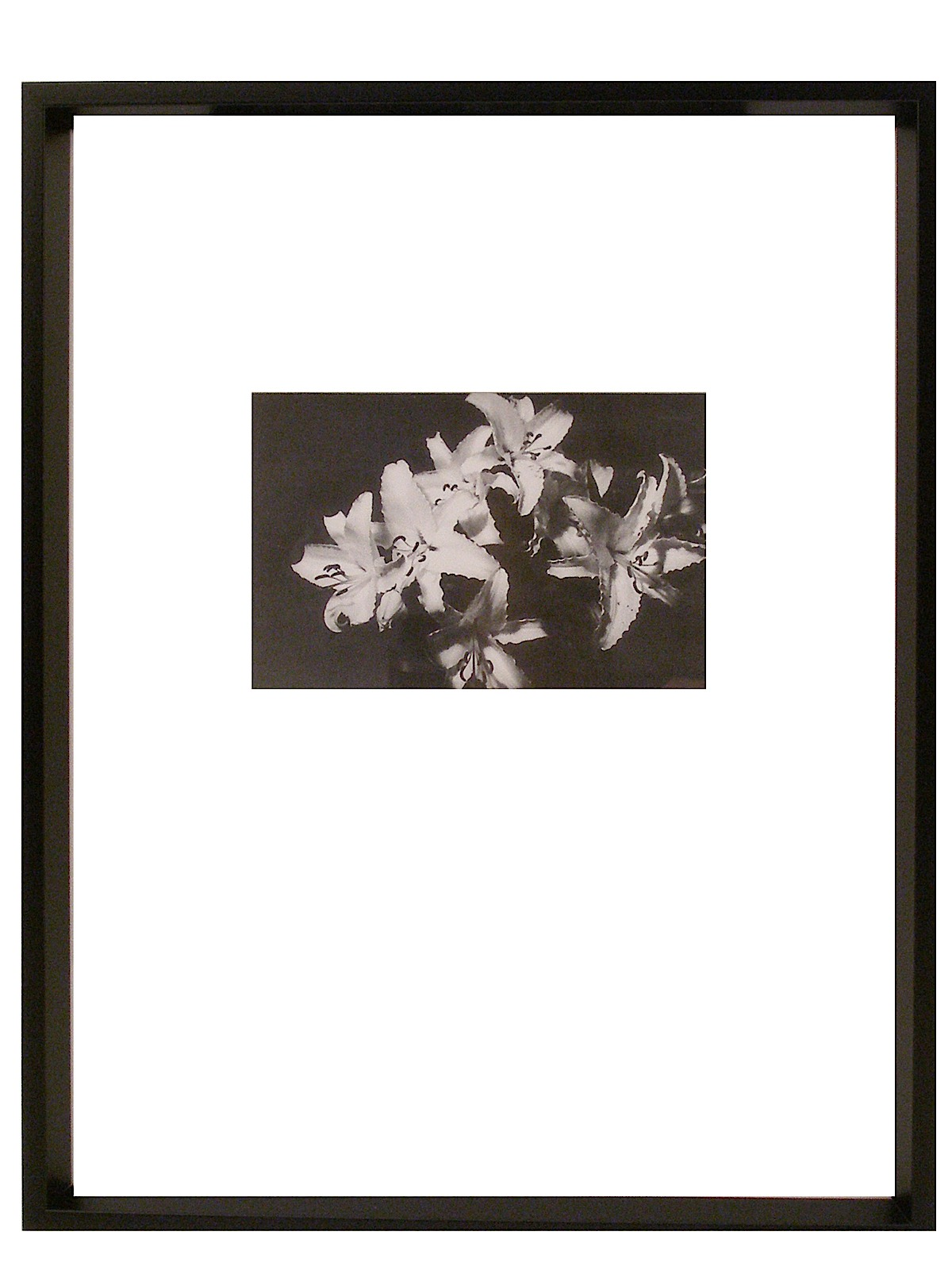 Nielsen Bainbridge Gallery Collection Frames