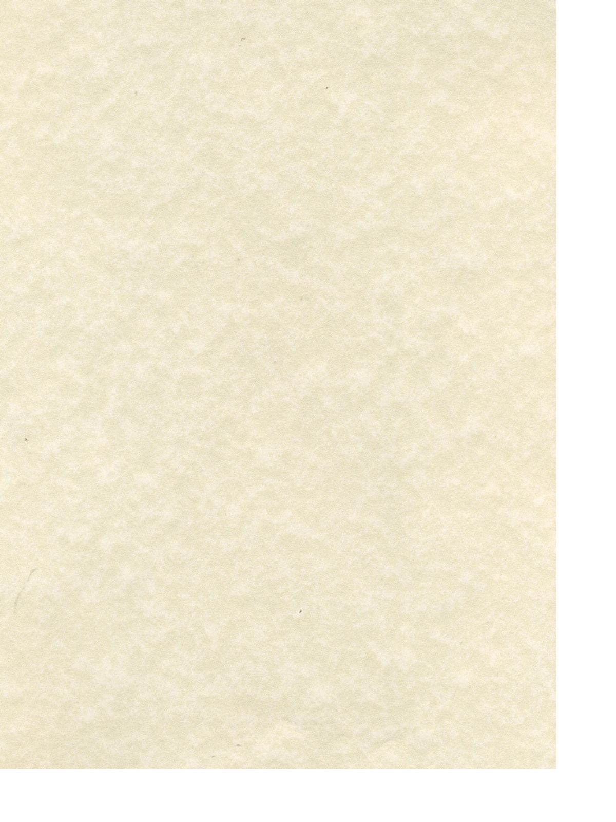 Canson Classic Cream Drawing Paper Sheets